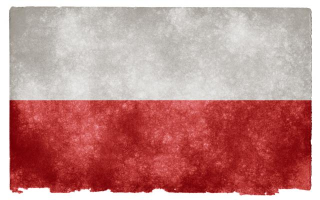Dziesięć rad dla Naszej Polski